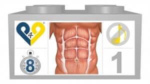 Blog 13 - anatomie